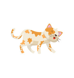 funny cat with red spots kitten walking and vector image