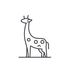 giraffe line icon concept giraffe linear vector image