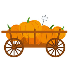 harvesting product pumpkin in cart farm vector image