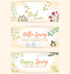 herb hand drawn card vector image