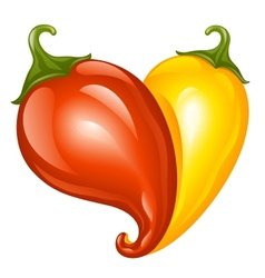 Hot chilli pepper red and yellow vector