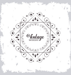 Vintage and exlusive ornament flourish swirl vector