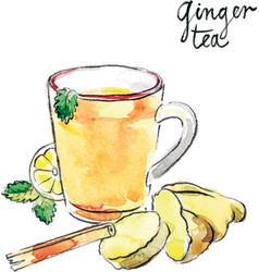 watercolor ginger tea vector image