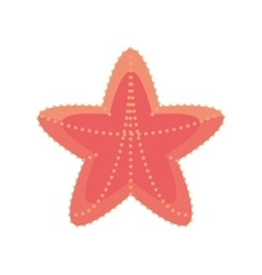 sea starfish vacation beach sign vector image vector image