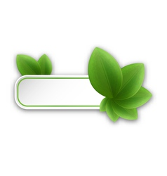 Eco friendly banner with green leaves vector image