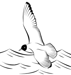 Seagull flying over the sea vector image