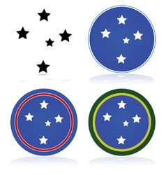 Southern cross vector image