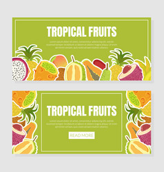 tropical fruits landing page template with fresh vector image