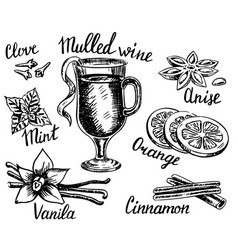 ink hand drawn style mulled wine set vector image