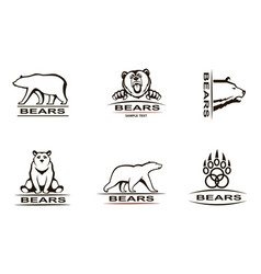 bear emblem set vector image