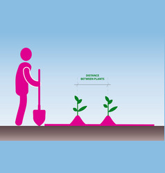 work in the garden planting plants simple vector image