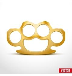 Gold Metal Brass knuckles vector image vector image
