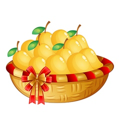 A basket of ripe mangoes vector image vector image