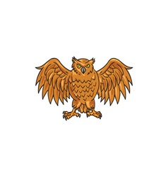 Angry Owl Wings Spread Drawing vector image