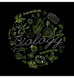 Biology Concept 03 A vector