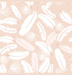 feather pattern birds feathers on biege background vector image