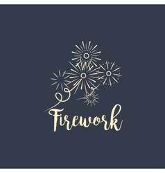 Firework company logo design on dark vector image
