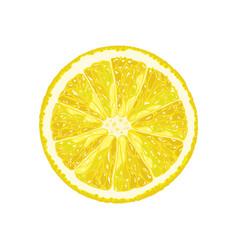 Half lemon vector