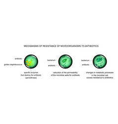 mechanisms of microbial cell resistance to vector image