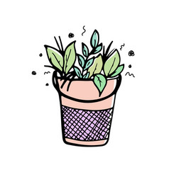 Plants and leaves in a metal bucket hand-drawn vector