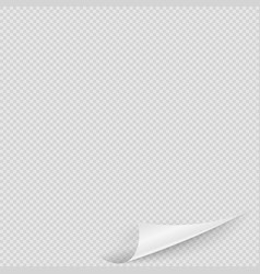 realistic transparent curly page corner design vector image