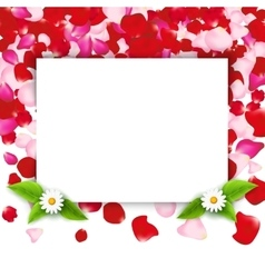 Rose petals frame invitation for party or wedding vector image