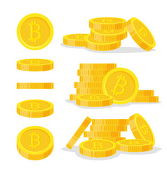 set digital bitcoins flat style isolated on white vector image