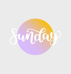 sunday handwriting font by calligraphy vector image