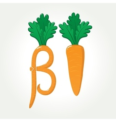 Beta-Carotene provitamin A healthy carrot vector image
