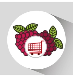 cart shopping fruit raspberry icon graphic vector image
