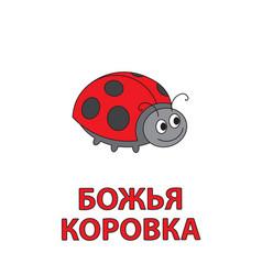 cartoon ladybug flashcard for children vector image