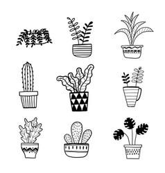 collection of hand drawn plants in a pot vector image