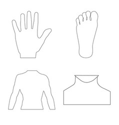 design of human and part icon set of human vector image