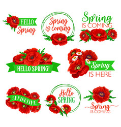 hello spring floral symbol set with flower bouquet vector image