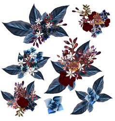 set detailed flowers with blue leafs vector image