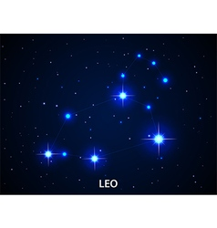 Set of Symbol Zodiac Leo vector image