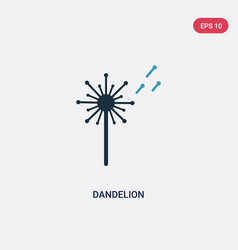 Two color dandelion icon from nature concept vector
