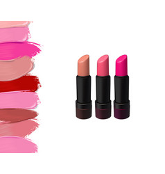 lipstick set on white background beauty vector image vector image