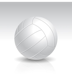 Realistic White Volleyball vector image