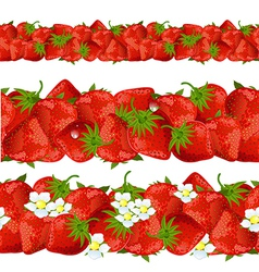 seamless border of strawberry vector image vector image