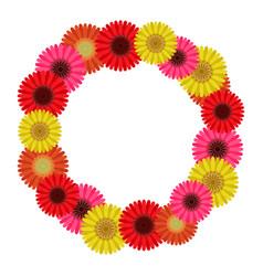 frame wreath of gerbera flowers vector image