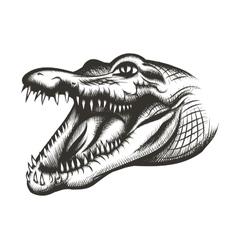Crocodile head black vector image