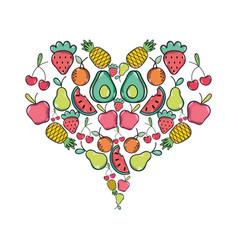 delicious tropical organ fruits of heart shape vector image