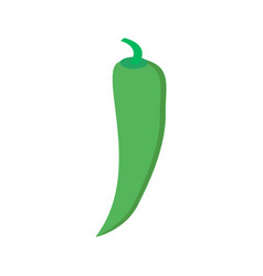 chilli pepper isolated on white background vector image