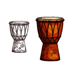 sketch icon of drum musical instrument vector image vector image
