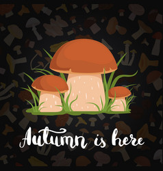 background with cartoon mushrooms and vector image