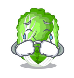 Crying cartoon fresh chinese cabbage vegetable in vector