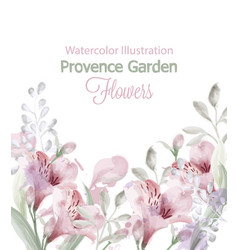 provence flowers garden watercolor vector image
