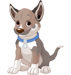 puppy dog vector image