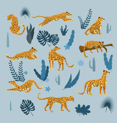 set leopards in various poses plants flowers vector image